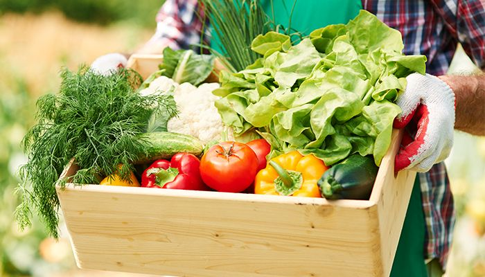Beneficiile conceptului organic si brandul Biona