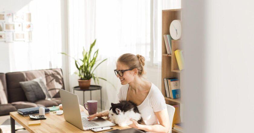 3 motive pentru care afacerile trebuie sa imbratiseze stagiile virtuale de practica